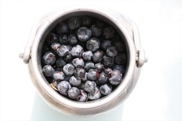 Vaccinium myrtillus, Heidelbeere, Blaubeere mit tiefblauen Früchten