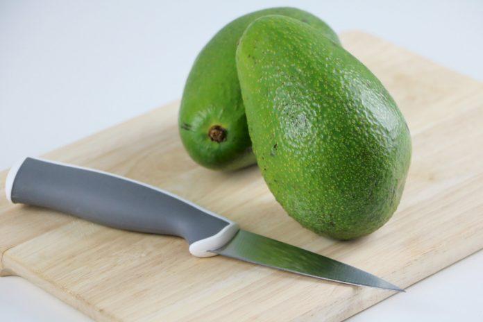 Avocado, Avocado-Pflanze züchten