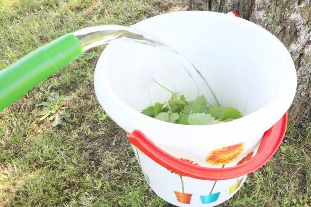 Produce Stinging nettles manure