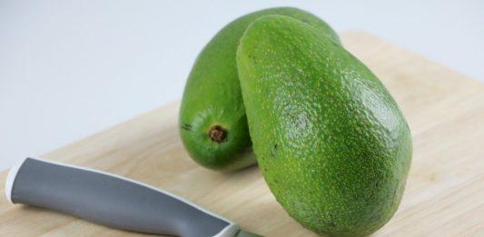 Avocado, Persea americana comes from South of Mexiko